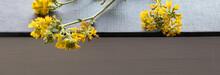Background. Yellow Flowers Lie On A Dark Book