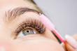 canvas print picture - Beautiful Woman with long lashes in a beauty salon. Eyelash extension.