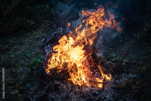 In de dag Vuur / Vlam a fire in the garden