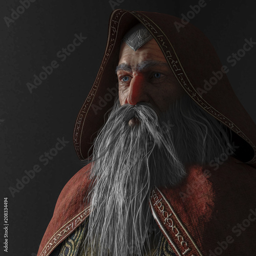 the old wizard Canvas Print