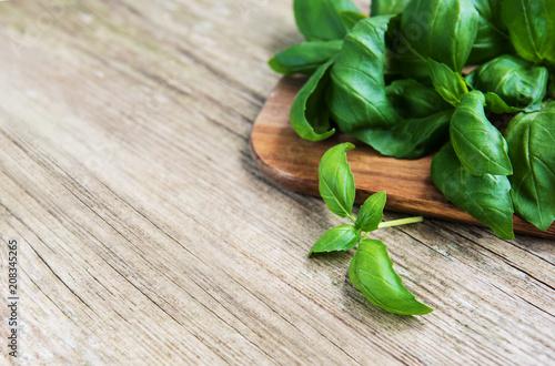 Papiers peints Condiment Fresh green basil