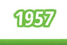Jahr 1957 - Weiße Zahl 1957 Mit Frischen Gewachsenen Grünen Grashalmen Symbol