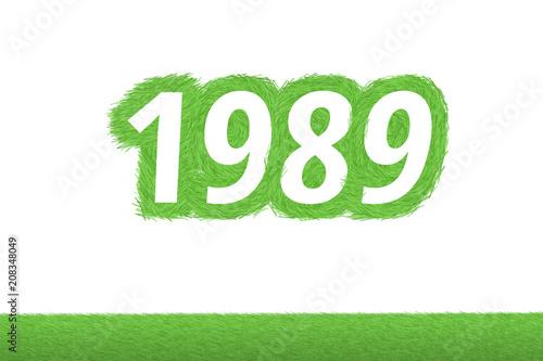 Fotografia  Jahr 1989 - weiße Zahl 1989 mit frischen gewachsenen grünen Grashalmen Symbol
