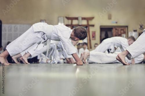 Fotografie, Obraz  Kids of karate. Training and exam in karate.