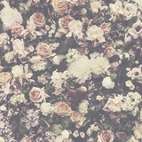 Świeży kwiatu wzoru tło - 208370436