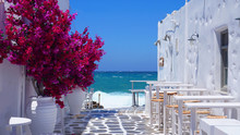 Photo Of Beautiful Bougainvillea Flower With Awsome Colors In Picturesque Greek Island With Deep Blue Waves