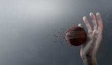 Cricket Ball In Flight