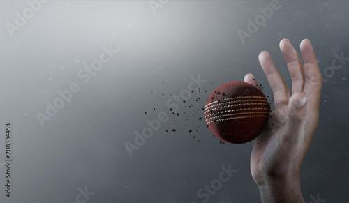 Photo Cricket Ball In Flight