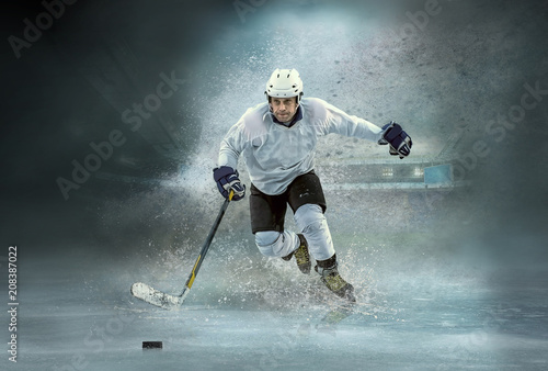 Caucasian ice hockey Players in dynamic action in a professional Wallpaper Mural