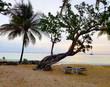 Weißer Sand und Türkises Wasser am Karibik Strand auf Jamaika