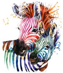 zebra illustration with spl...