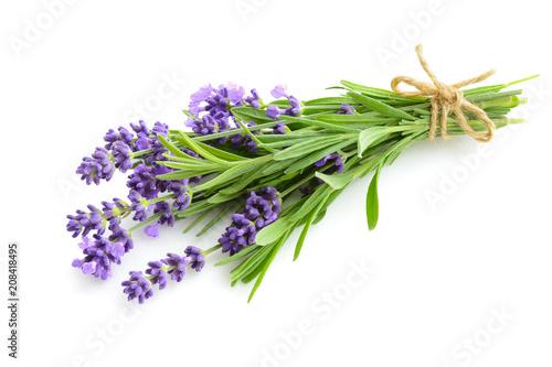 Garden Poster Lavender Lavender flower bouquet on a white