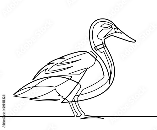 Duck Continuous Line Vector Illustration