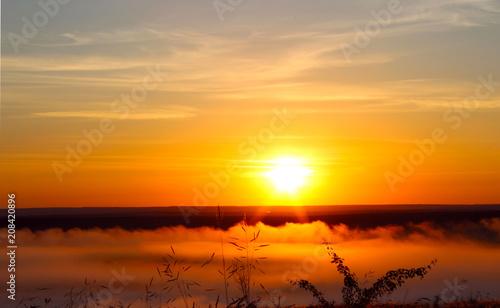Fotobehang Pier Misty dawn in the field