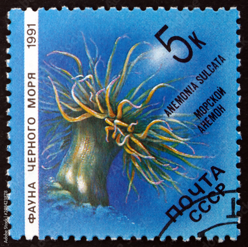 In de dag Mediterraans Europa Postage stamp Russia 1991 Mediterranean Snakelocks Sea Anemone