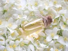 Natural Jasmine Flower Oil For...
