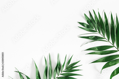 Tropical palm leaves on white background. Summer concept. Flat lay, top view, copy space