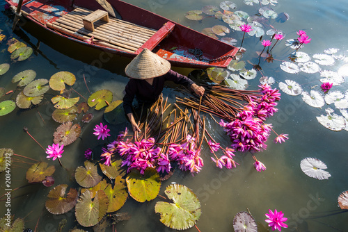 Montage in der Fensternische Wasserlilien Yen river with rowing boat harvesting waterlily in Ninh Binh, Vietnam