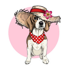 Vector Portrait Of Beagle Dog ...