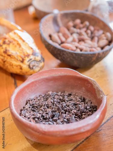 Poster Zuid-Amerika land Chocolat, cacao et cabosse
