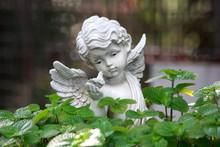 The White Angel Statue In Garden.
