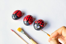 Three Painted Stones As Cute Ladybugs On White Background