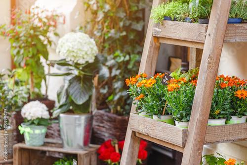 Foto op Canvas Bloemen Outdoor flower shop or floral market with decorative bouquets and plants