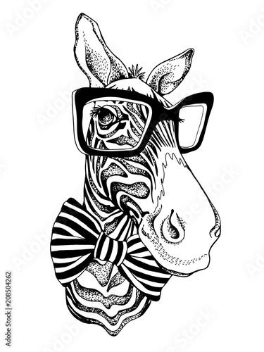 Obraz na płótnie Portret zebry w okularach