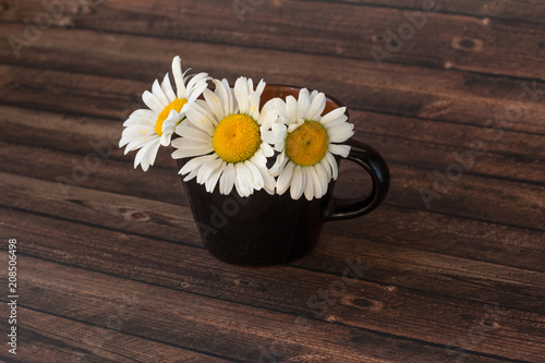 Foto op Canvas Madeliefjes chamomile in a cup