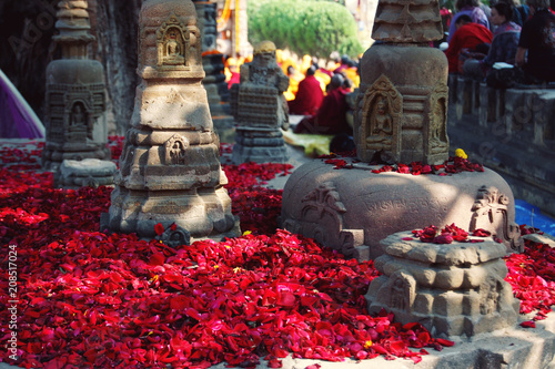 Red rose-petals for showing the reverence appropriate to a pilgrimage-place. Numerous small rose petals for offering respect at Mahabodhi Temple. Bodh Gaya, India.