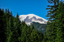 Mt. Rainier National Park, USA