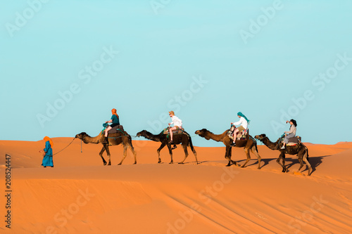 Papiers peints Maroc Camel caravan going through the sand dunes in the Sahara Desert. Morocco Africa. Beautiful sand dunes in the Sahara desert.