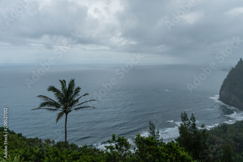 Scenic Pololu Valley vista on a rainy day on the Big Island of Hawaii Poster