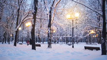 Beautiful Evening Park Winter Scene, Trees And Ground Are Covered With Snow, Yellow Street Lights Shining, People Are Walking On Background, Russian Moscow Park.
