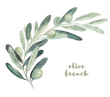 Watercolor Illustration With O...
