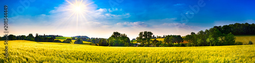 Photo sur Aluminium Orange Panorama of a landscape with fields, meadows, trees and sun