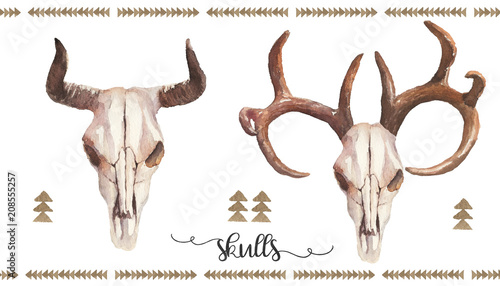 Watercolor Boho Illustration Set Bull Cow Deer Skulls With
