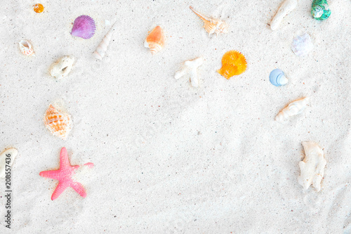 Fotografie, Tablou  Beach background - top view of beach sand with shells and starfish