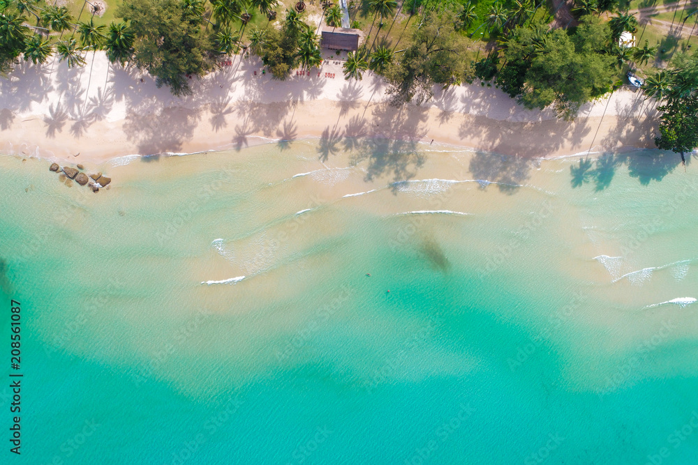 Fototapety, obrazy: Aerial photo nature landscape of idyllic white sand beach with coconut tree