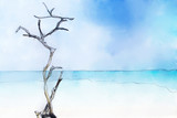 Sand beach at blue sea with dead tree. Digital painting image. - 208561804