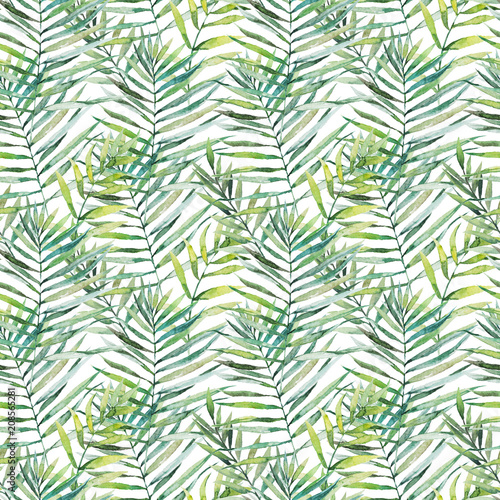 Ingelijste posters Tropische Bladeren Green tropical palm & fern leaves on white background. Watercolor hand painted seamless pattern. Tropical illustration. Jungle foliage.