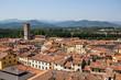 Roof tops in Luca