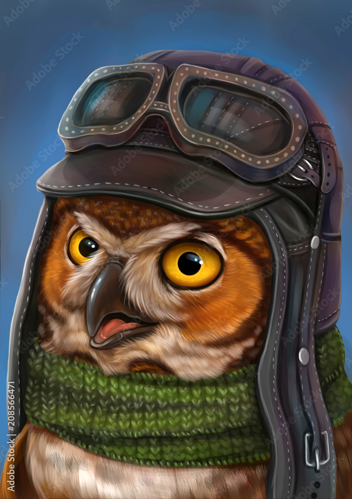 Сова летчик