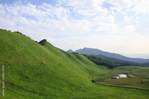 Green grassy hillside above Kame Pond at Soni Kogen Wallpaper Mural