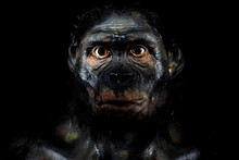 Neanderthal Man Isolated On Bl...
