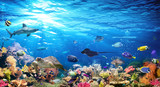 Fototapeta  - Underwater Scene With Coral Reef And Exotic Fishes