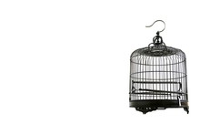 Metal Birdcage On A White Background