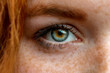 canvas print picture - Close up of one eye of young red ginger freckled woman with perfect healthy freckled skin, looking at camera. Ophthalmology, Vision care