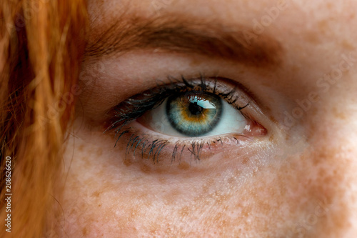 Fotografiet Close up of one eye of young red ginger freckled woman with perfect healthy freckled skin, looking at camera