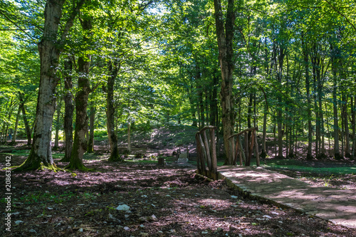 Zeda-gordi, Georgia. View Of Paved Forest Path and wooden bridge Leading To Canyon Okatse